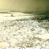 tundra300