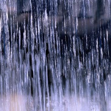 falling rainviolet